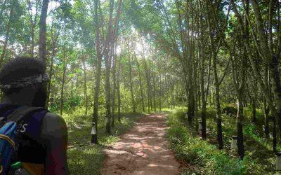Adventure Trekking in Luang Namtha
