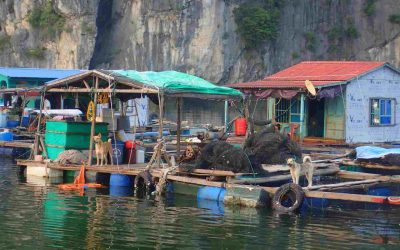 An Amazing Lan Ha Bay Boat Tour on a Budget