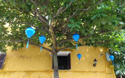 Yellow building with blue lanterns in tree