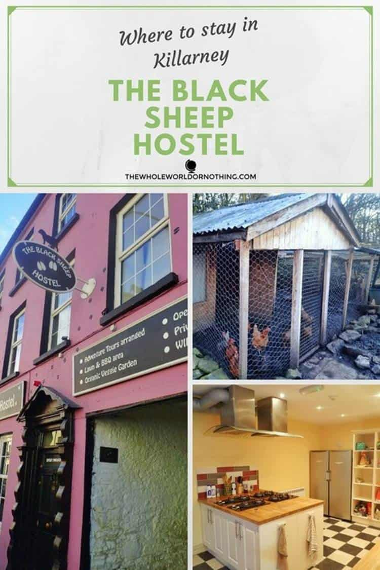 At the Blacksheep Hostel with text overlay Where to stay in Killarney - The Black Sheep Hostel
