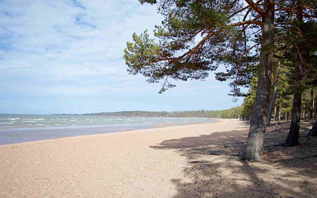 9 Best Things To Do In Lidköping Sweden