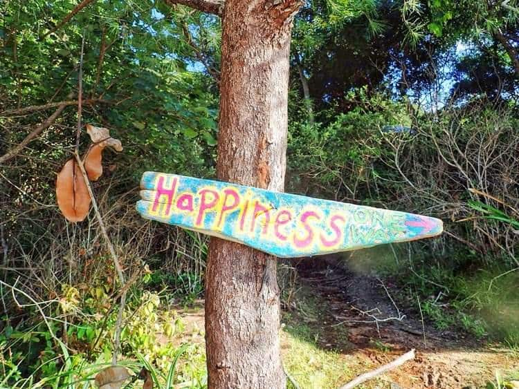 Happiness on the tree