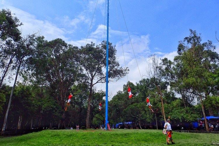 Danza de los Voladores in Chapultepec Park