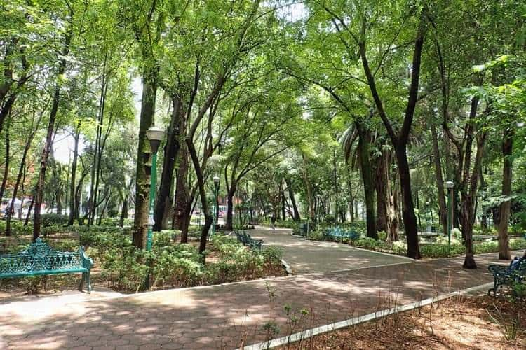Parque Mexico in Condesa best place to stay in Mexico City
