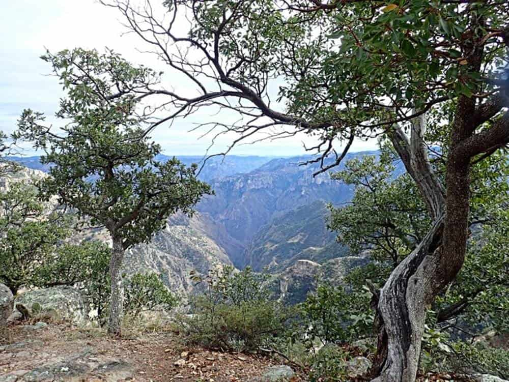 Sierre-Madre-landscape