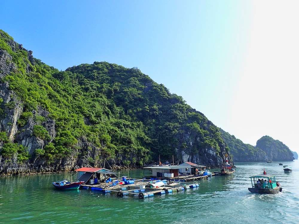 what to do on Cat Ba Island Vietnam