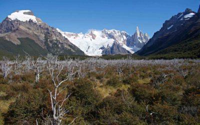 Bariloche to El Chalten: The Best Route
