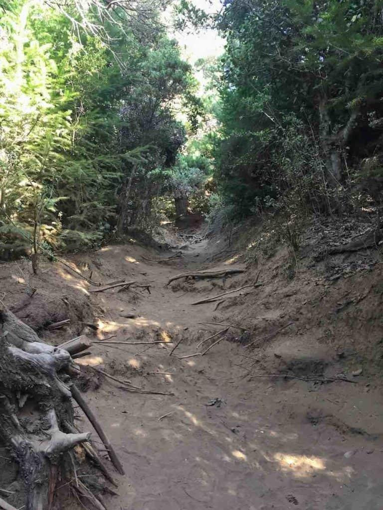 Hiking route up Cerro Campanario