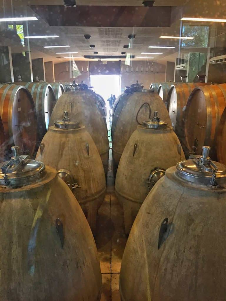 Concrete wine vats at Trapiche Mendoza