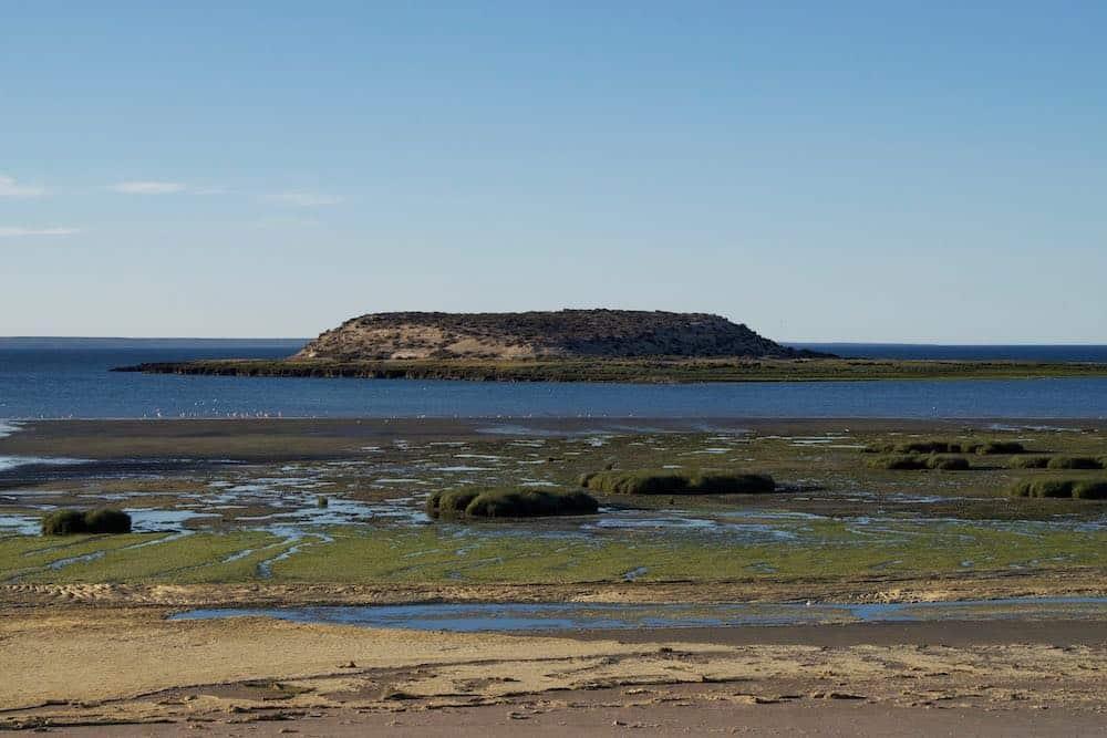 Isla de los Pajaros Peninsula Valdes Argentina