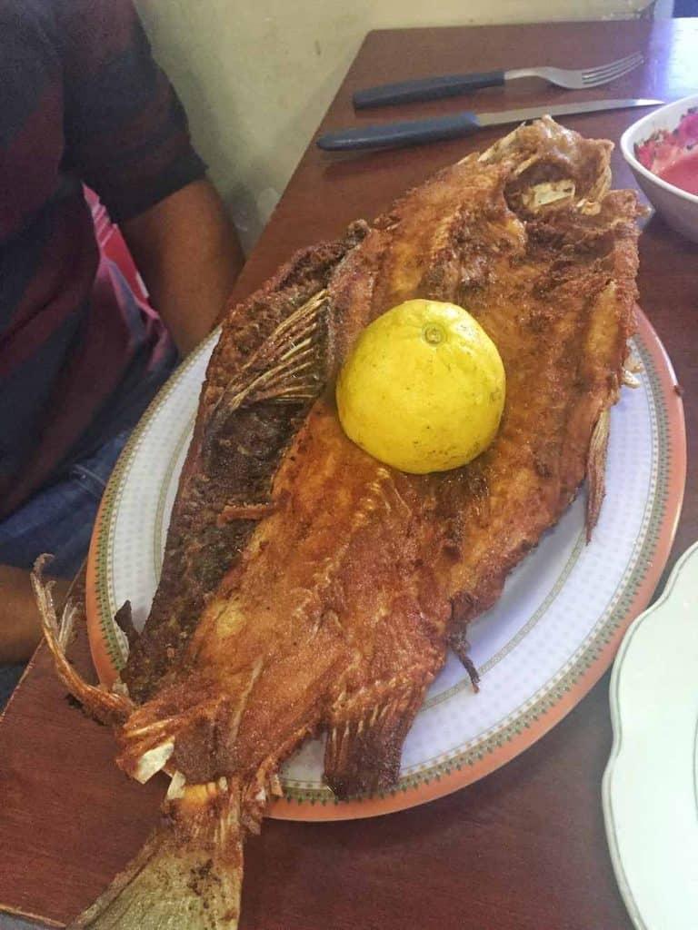Dorado Fish Bolivia Market
