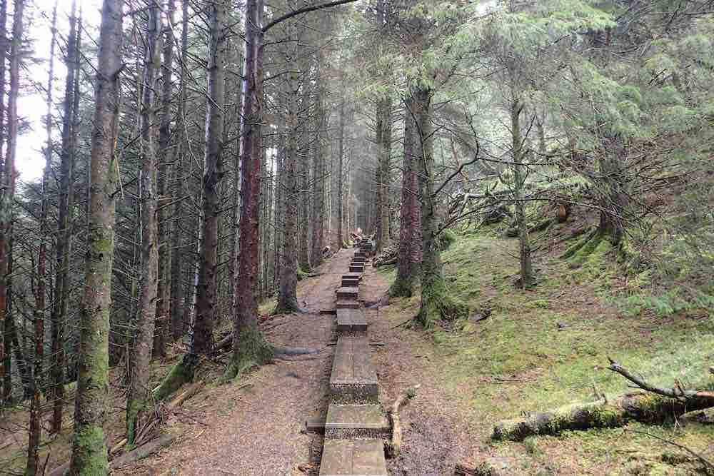 Best hikes in Sligo