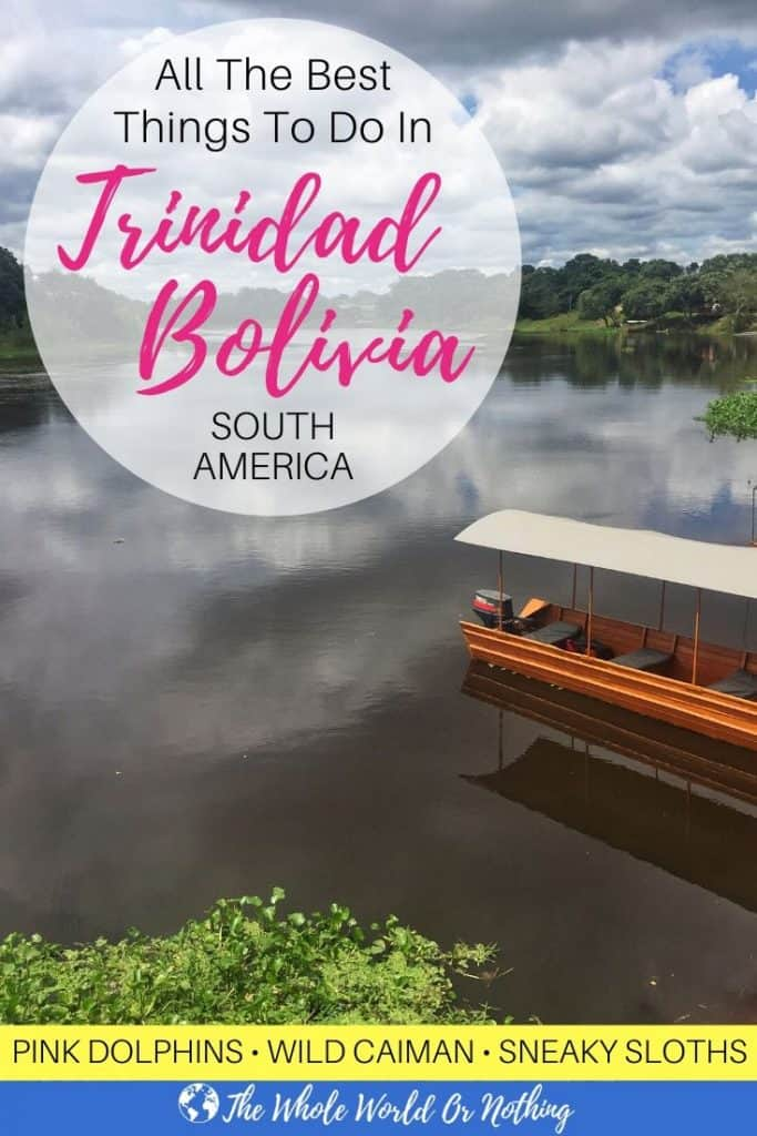 Full info on how to see wild pink river dolphins in the Bolivia's Amazon basin, plus lots of other fun activities. Click through to read now | #SouthAmerica #TrinidadBolivia #Bolivia