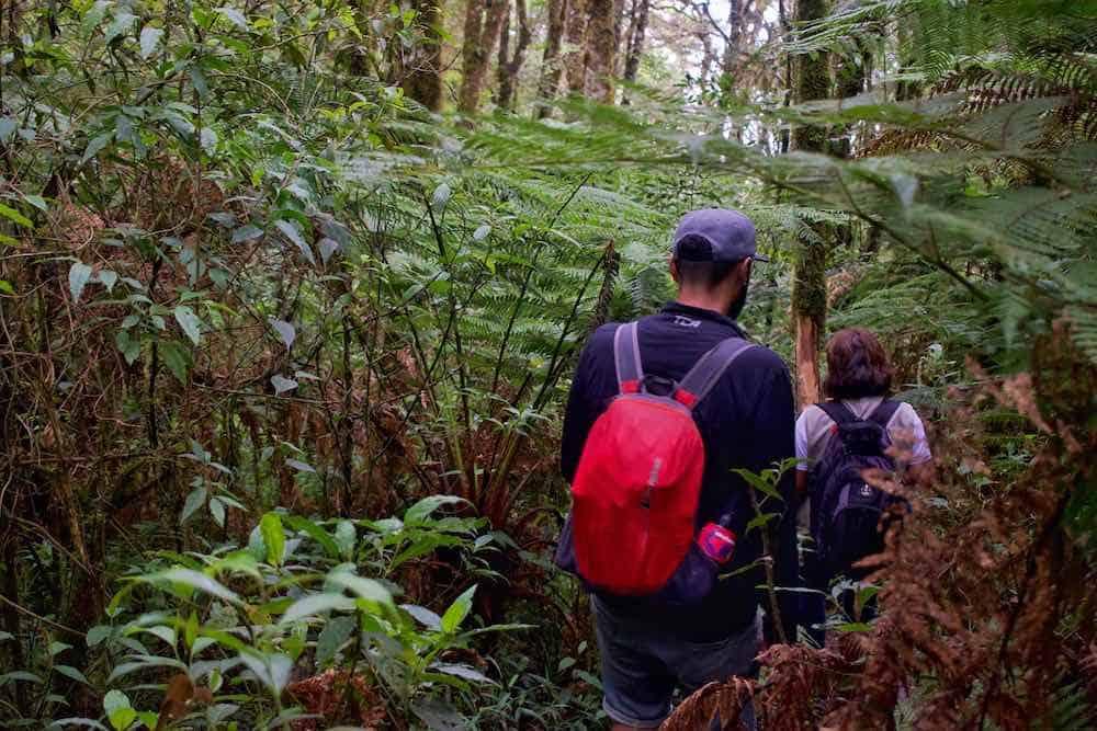 Amboro National Park Samaipata