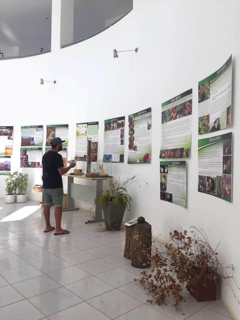 Cibioma Museum Trinidad Bolivia