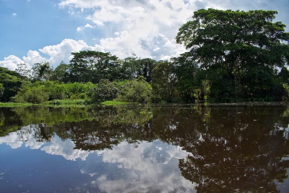 River Ibare Trinidad Bolivia