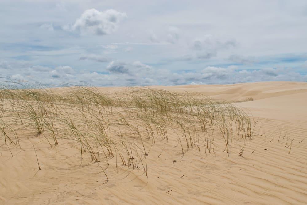 Sand Dunes Santa Cruz Bolivia