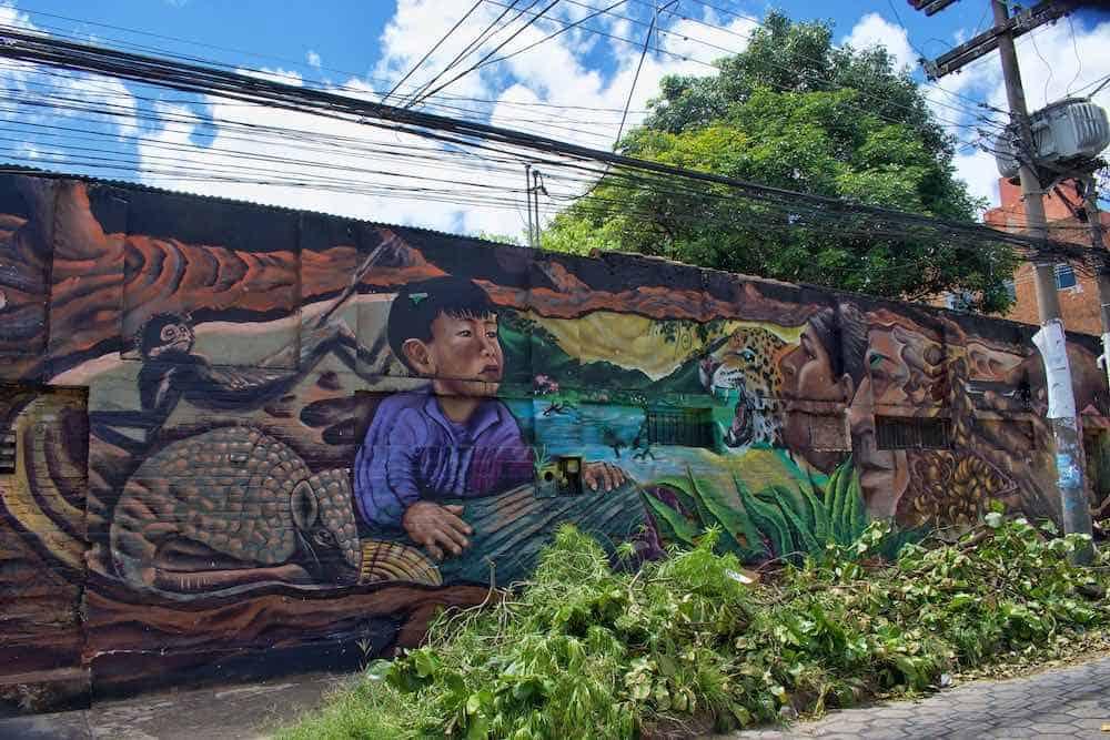 Street Art Santa Cruz Bolivia