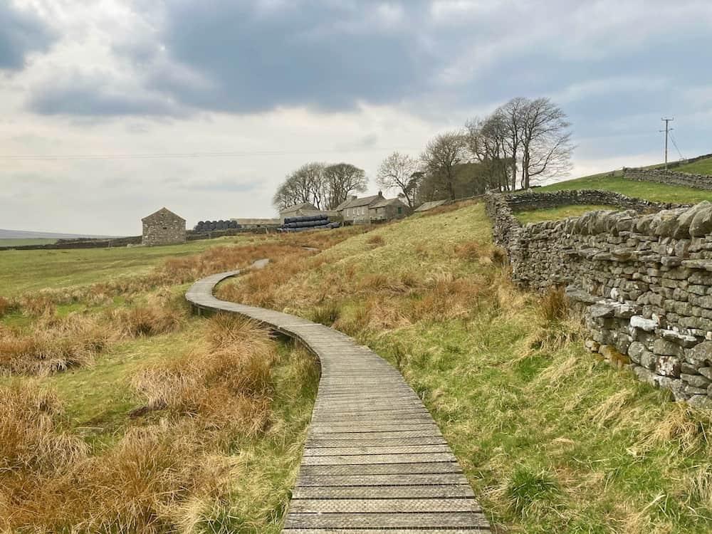 Hannahs meadow