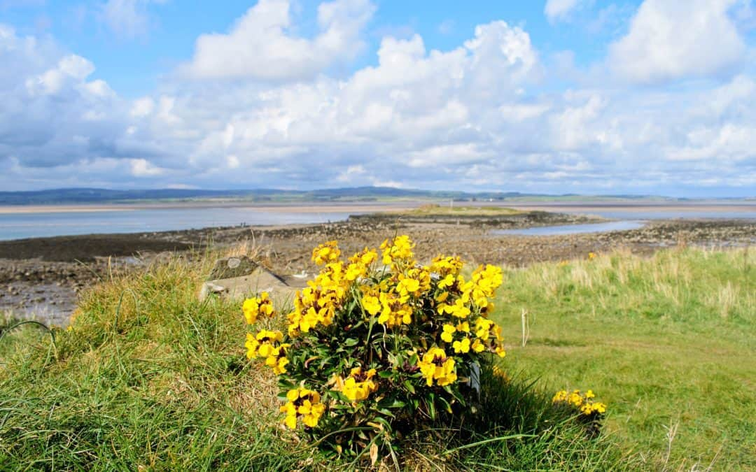 Northumbrian Coast: 10 Spots You Can't Miss