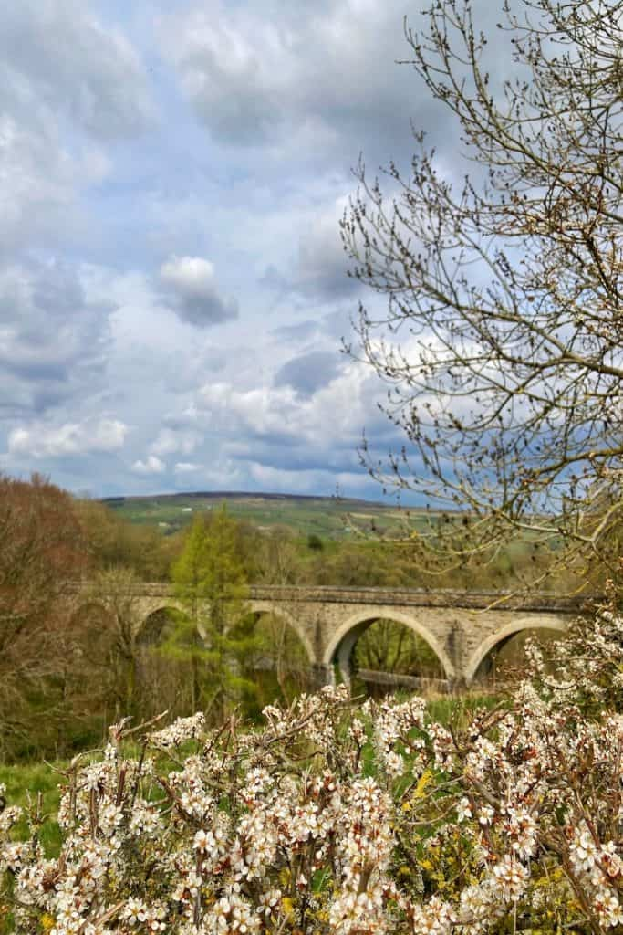 Tees Railway Viaduct