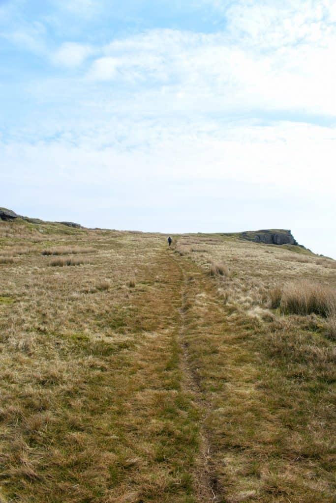 Upper Teesdale moorland