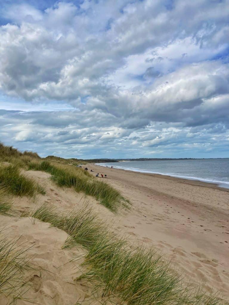 Warkworth Northumberland Beach