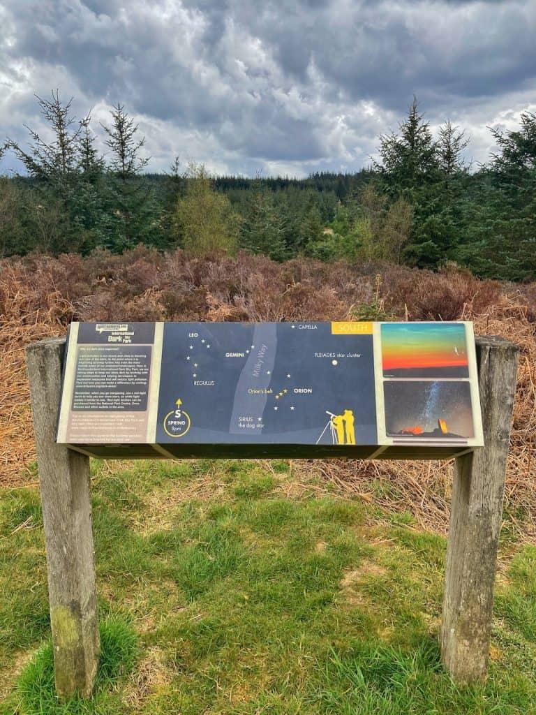 Kielder Forest Stargazing