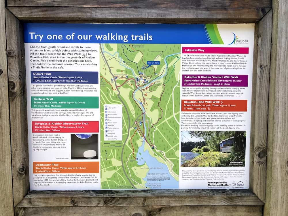Kielder Forest walks