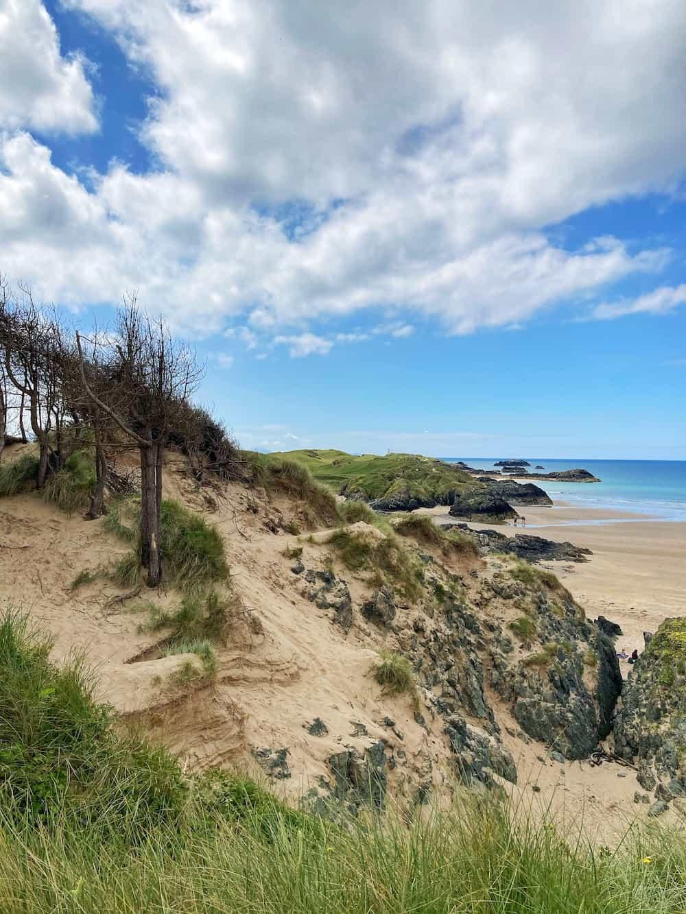 Newborough Nature Reserve Anglesey