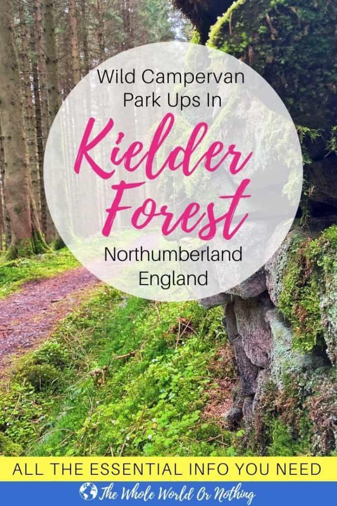 Path in Kielder Forest Northumberland