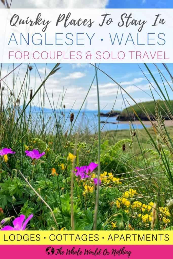 wild flowers and sea view in background with text overlay places to stay in anglesey wales