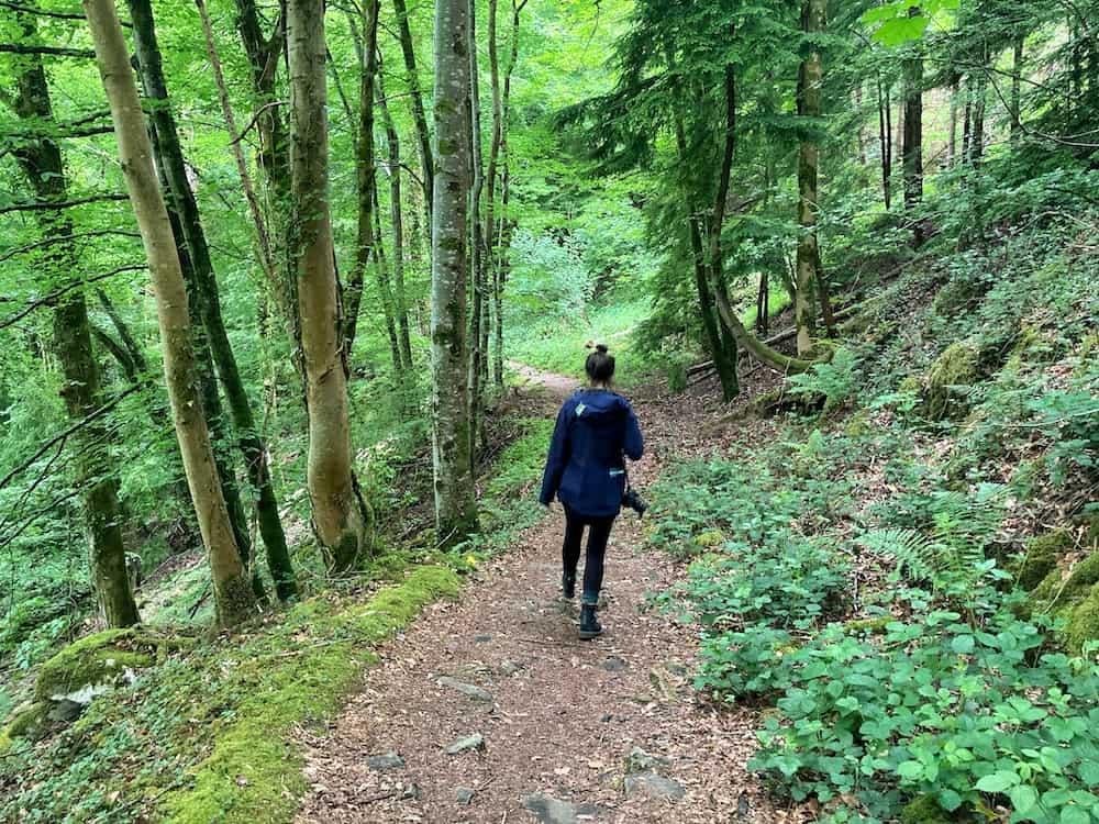 Conwy Falls walk