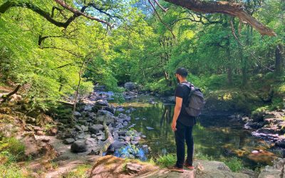 Adventure Lovers Guide To Betws y Coed Wales