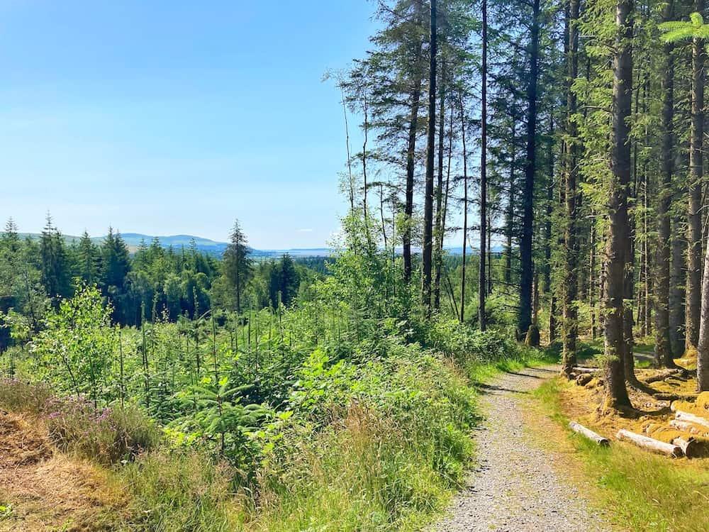 Galloway Forest South West Coastal 300 detour